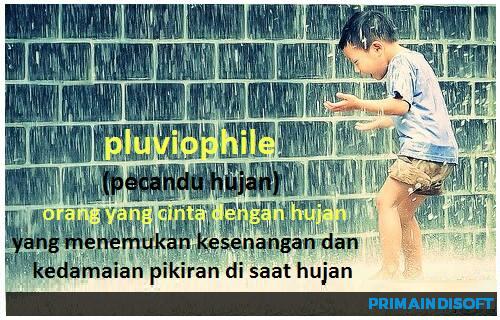 pluviophile istilah hujan lainnya yang pasti kamu belum tahu